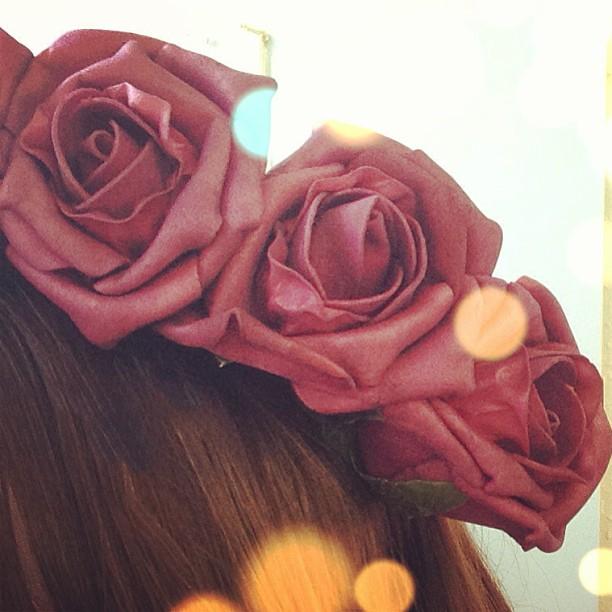 Rose crowns